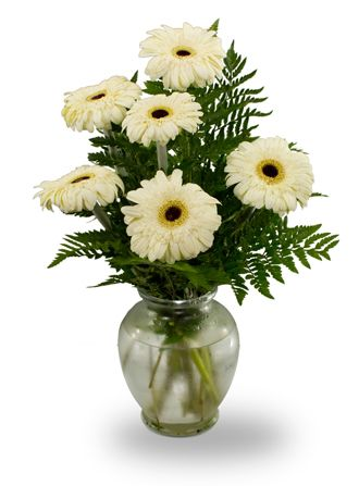Flowers for usa - Gerbera vase flowers