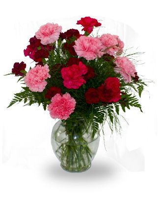 Flowers for usa - Carnation vase flowers