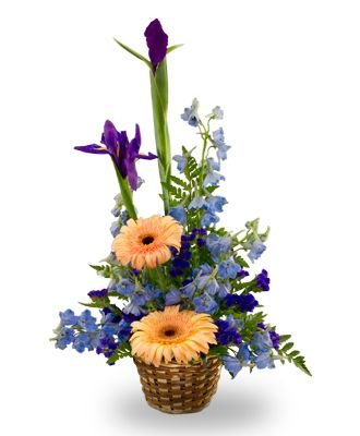Flowers for USA - A basket arrangement for a baby boy flowers