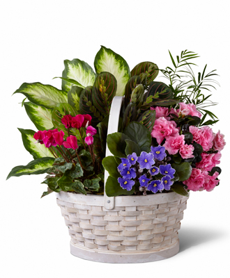 Flowers for usa - Peaceful Garden Basket flowers