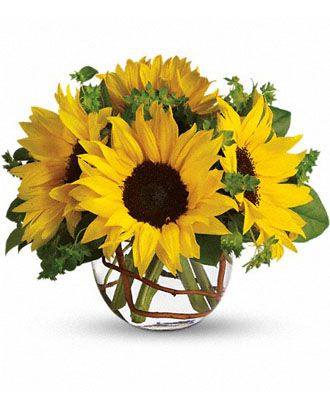 Flowers for usa - Sunny Sunflowers flowers