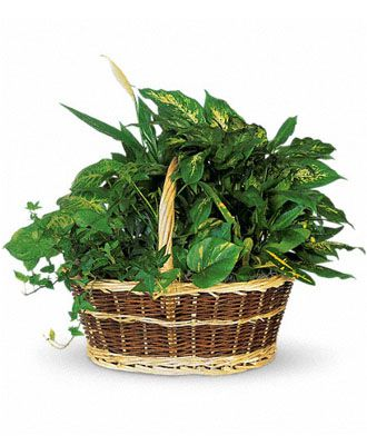 Flowers for usa - Large Basket Garden flowers