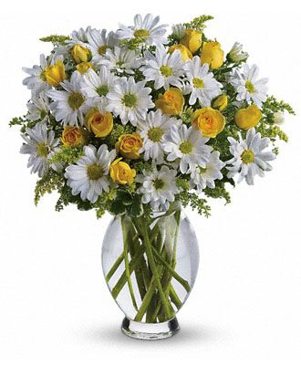 Flowers for usa - Teleflora's Amazing Daisy flowers