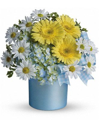 Flowers for usa - Teleflora's Once Upon a Daisy flowers