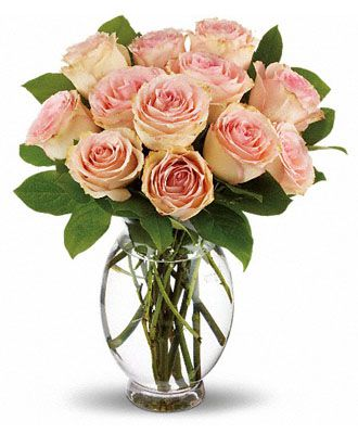 Flowers for usa - Teleflora's Delicate Dozen flowers