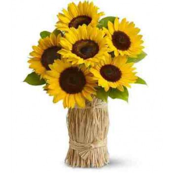 Fuengirola flowers  -  Summer Flower Delivery