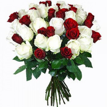 Benalmadena flowers  -  Scarlet Roses Flower Bouquet/Arrangement