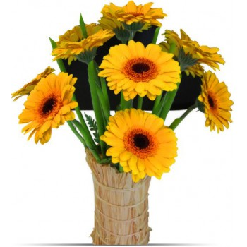 Bahrain flowers  -  Gerbera Flower Delivery