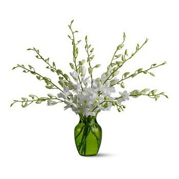 Dubai online Florist - Winter Fresh Bouquet