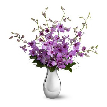Umm Al Quwain online Florist - Beautiful Purples Bouquet