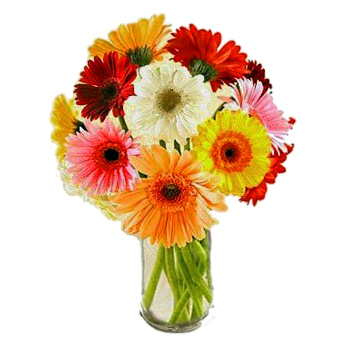 United Arabs Emirates flowers  -  Daydream Flower Delivery!