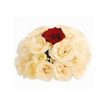 Abu Dhabi Blumen Florist- My One and Only Bouquet/Blumenschmuck
