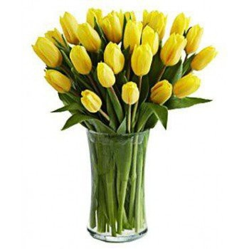 Ankara flowers  -  Wonderful day Flower Delivery