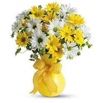 Jesenice flowers  -  Sun Rays Flower Bouquet/Arrangement