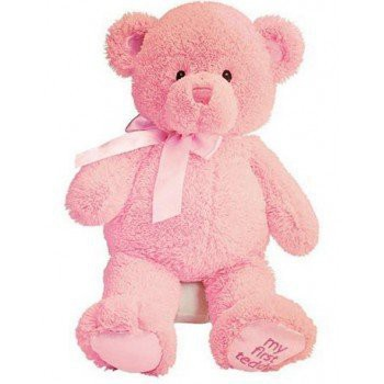 Hamilton flowers  -  Pink Teddy Bear  Delivery