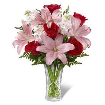 flores de Catar- Blushing Beauty Flor Entrega