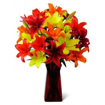 United Arabs Emirates flowers  -  Pure Bliss Flower Delivery