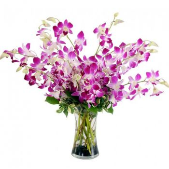 Saint Petersburg flowers  -  Devine Choice Flower Delivery