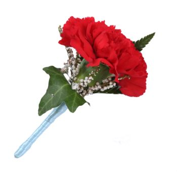 Pau flowers  -  Carnation Buttonhole Flower Delivery