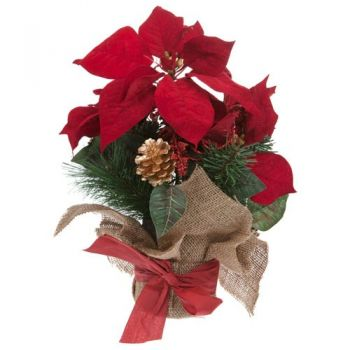 Paris flowers  -  Festive Spirit Flower Bouquet/Arrangement