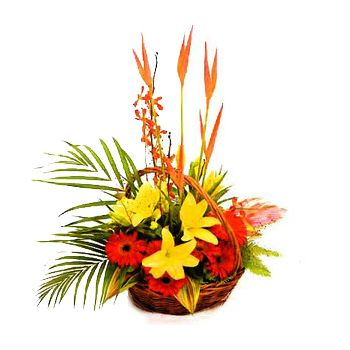 St. Lucia online Florist - Tropical Basket of Beauty Bouquet