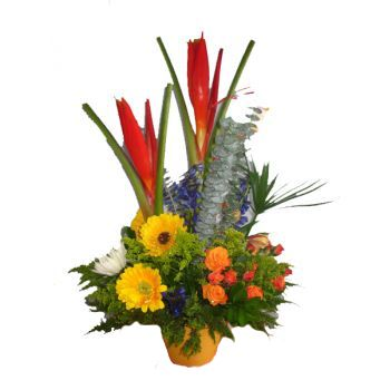 St. Lucia flowers  -  Tropical Carnival Flower Delivery