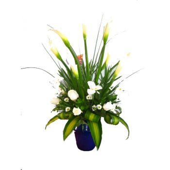 Barbados online Florist - White Glory Bouquet