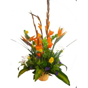 fleuriste fleurs de Aruba- Surprise tropicale Bouquet/Arrangement floral