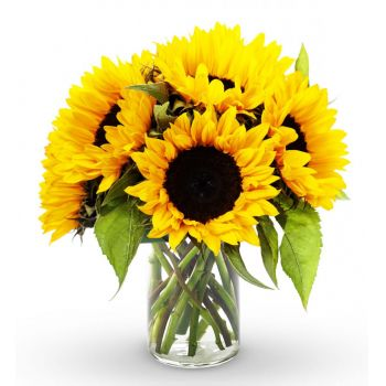 fleuriste fleurs de Boston- Sunny Delight Bouquet/Arrangement floral