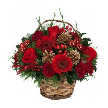 Trinidad online Florist - Holiday Delight Bouquet