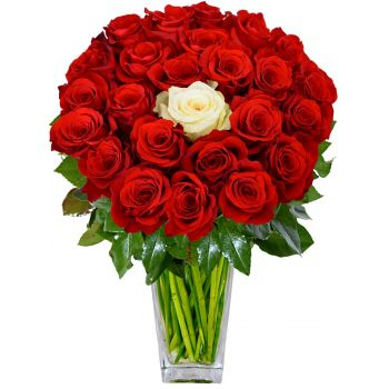 Novosibirsk flowers  -  You and Me Flower Delivery