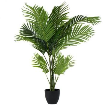 Muscat online Florist - Palm Tree Bouquet