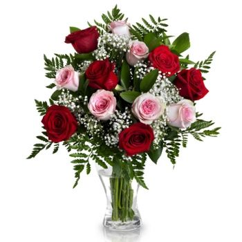 Bahrain flowers  -  Pink and Red Desire Flower Delivery