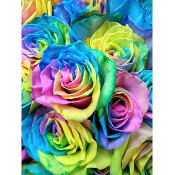 Saint Petersburg flowers  -  Rainbow Beauty Flower Delivery